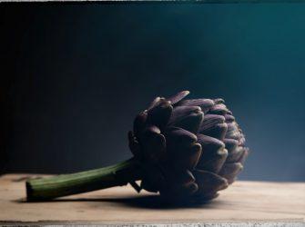L'artichaut, une beauté cachée